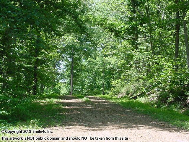 This 2.7 acres of heavily treed land for sale is a few minutes down the road from the boat ramp into Kentucky Lake about ten minutes from Murray, KY. It