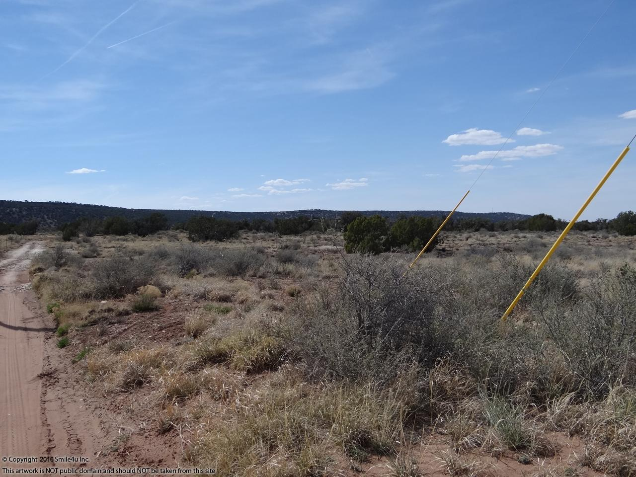 44 acres with power in ne arizona for Wmat game and fish