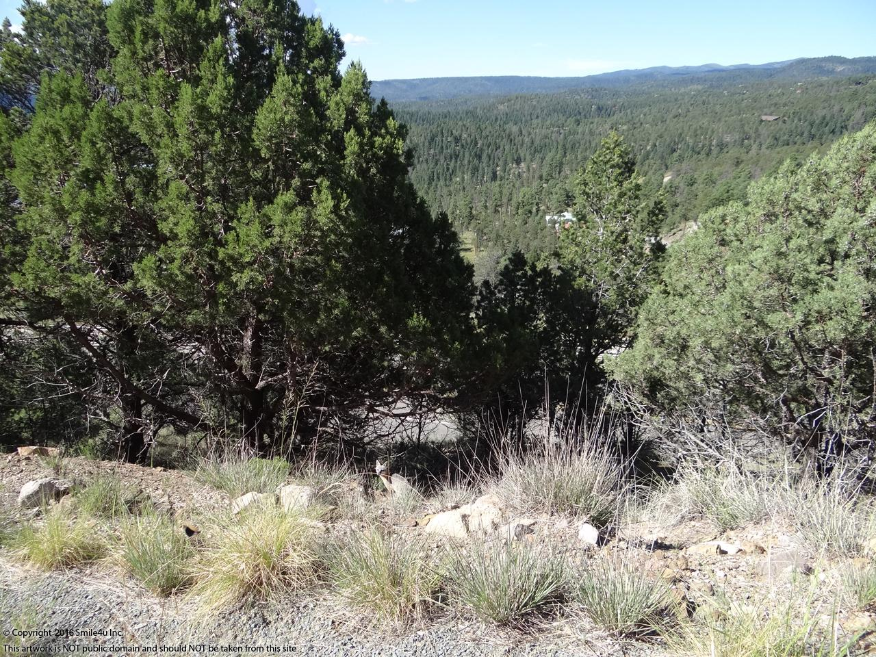 490063_watermarked_Ruidoso.JPG