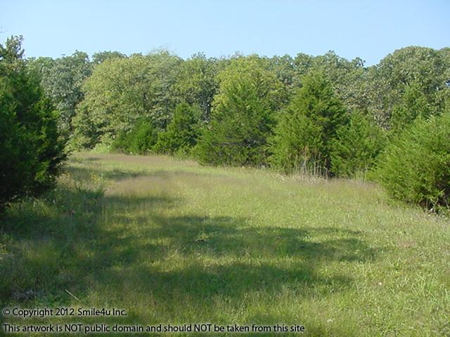 These nicely treed building lots about an hour W of Osage Beach, Missouri at Lake of the Ozarks are close to 3 boat ramps into the lake for fishing.