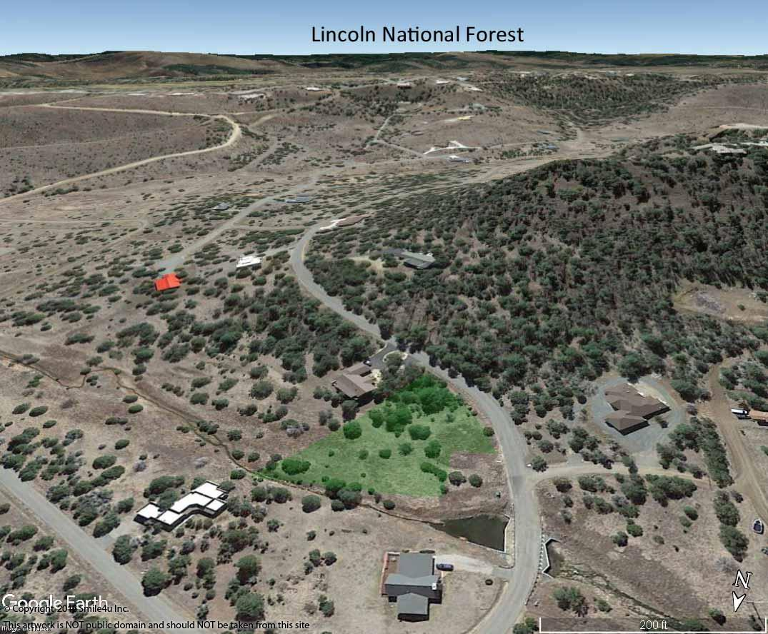 548221_watermarked_aerial to lincoln ntl forest.jpg