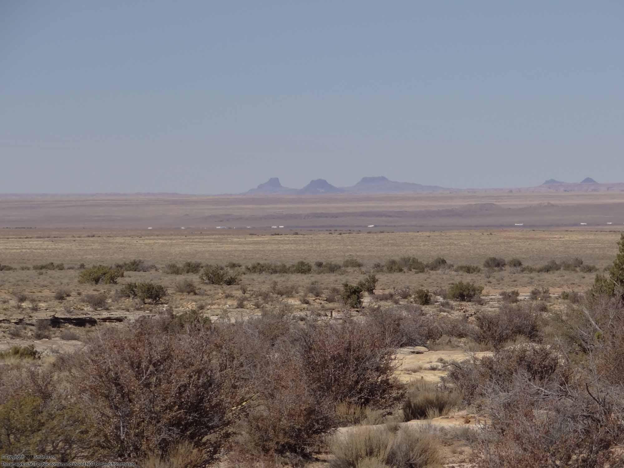 5 Acres With Cabin In Winslow Arizona