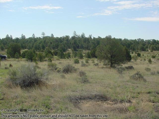 Land For Sale Candy Kitchen New Mexico