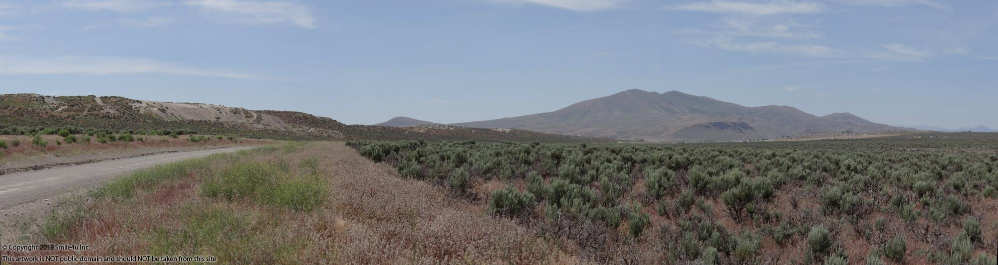 Looking S on Coal Mine Canyon Road with the Elko Hills in the distance.